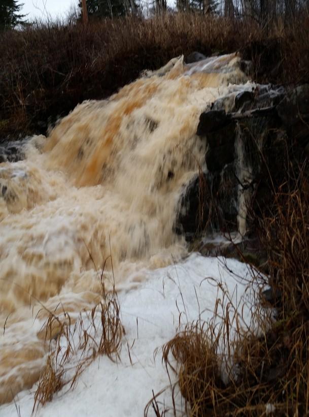 pauls-creek-28-november