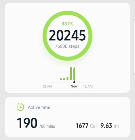 screenshot_20190208-173101_samsung-health-1
